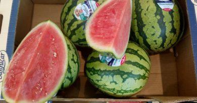 Was soll das mit den Wassermelonen am Strand?