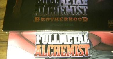 Fullmetal Alchemist oder FMA Brotherhood?  Unterschiede und welche Version sollte man (zuerst) ansehen?